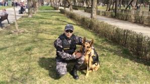 Gom, câinele poliţist care în vară a salvat o fetiţă, a murit. Suferea de o boală groaznică