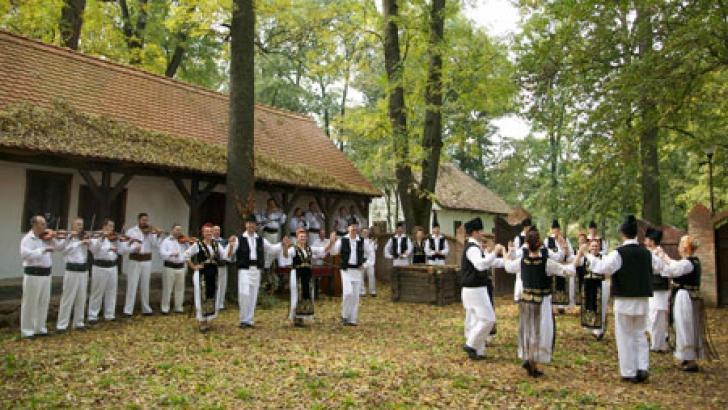 Doliu pentru folclorul romanesc! Unul dintre cei mai mari cantareti de MUZICA POPULARA a murit