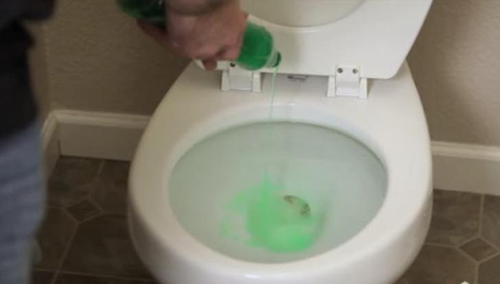 Cum să desfunzi vasul de toaletă cu un singur produs pe care îl ai în bucătărie