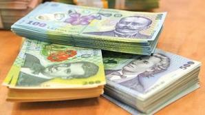 Bani de la stat pentru o afacere