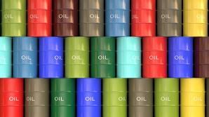 Petrol si criza