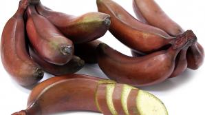 Ce sunt, de fapt, bananele roşii. Ai mânca un astfel de fruct?