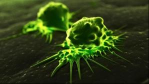 Cancerul ar putea fi detectat printr-un simplu test de sânge