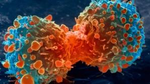 Amestecul magic care ne protejează de cancer