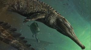 Uimitor. A fost descoperit cel mai mare crocodil care a trăit pe Pământ