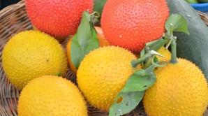 Acesta este fructul-minume pe care toată lumea trebuie să îl consume. Va revoluţiona medicina