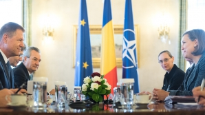 Întrevedere Nuland-Iohannis. SUA laudă progresele substanțiale în lupta împotriva corupției