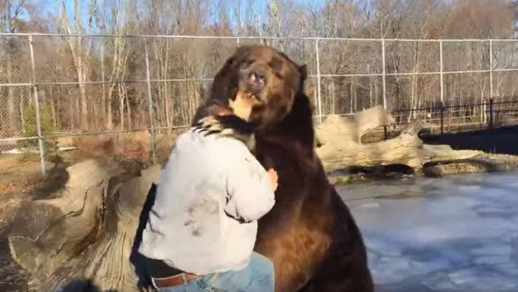 A intrat în cușca unui urs imens. Ce a urmat a devenit VIRAL. Ce s-a întâmplat cu bărbatul