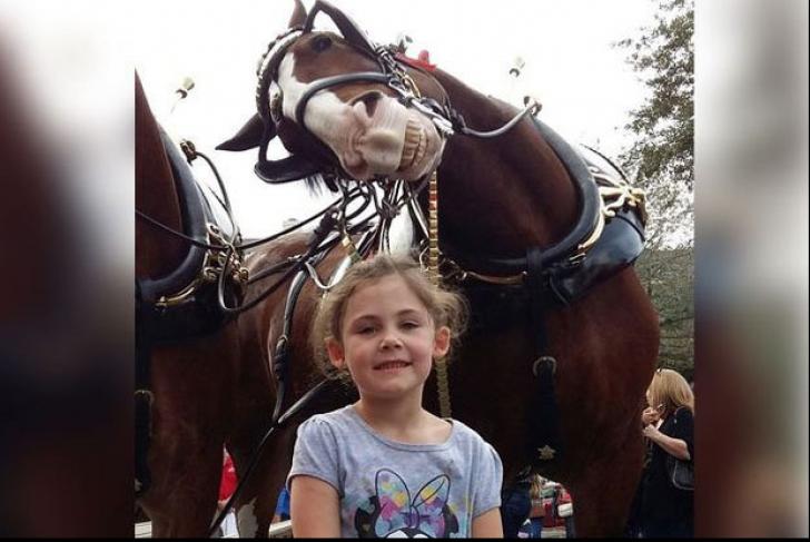 A mers la o cursă de cai și s-a pozat cu animalul ei preferat. A împietrit când a văzut imaginea