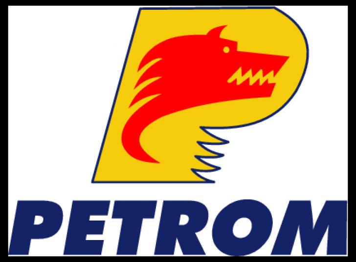 Cine sunt acţionarii din umbră ai Petrom