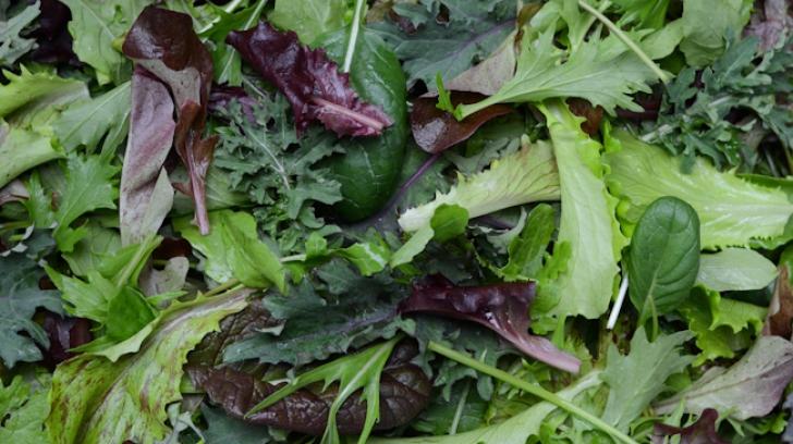 Salată la pungă, o bombă pentru sănătate. Iată ce poate conţine!