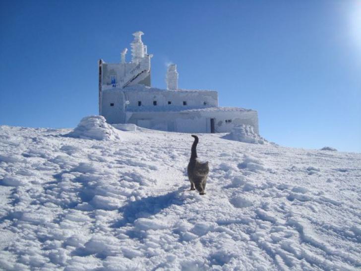 Împărăţia gheţurilor, în România. Unde e locul în care natura a creat un spectacol - GALERIE FOTO