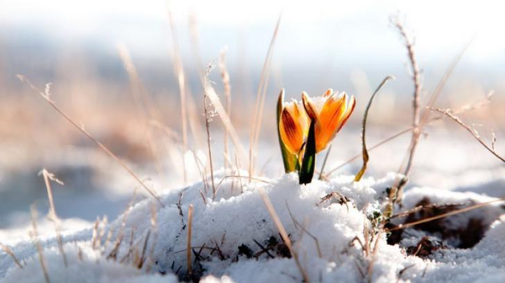 Variații de temperatură în intervalul 15-28 februarie