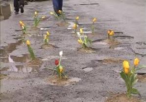 Protest inedit. Un primar din Vâlcea a plantat flori de primăvară în gropile unui drum județean