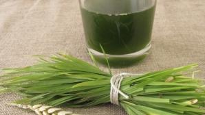 Tot ce trebuie să ştii despre cura cu suc din iarbă de grâu. Cum să-l faci şi de ce să-l bei