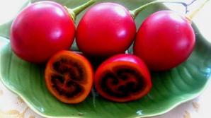 Tamarillo, fructul exotic mai puțin cunoscut cu efecte uluitoare asupra sănătății
