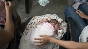 Virusul Zika face ravagii. Peste 25.500 de infecţii, dintre care 3.177 de femei gravide, în Columbia