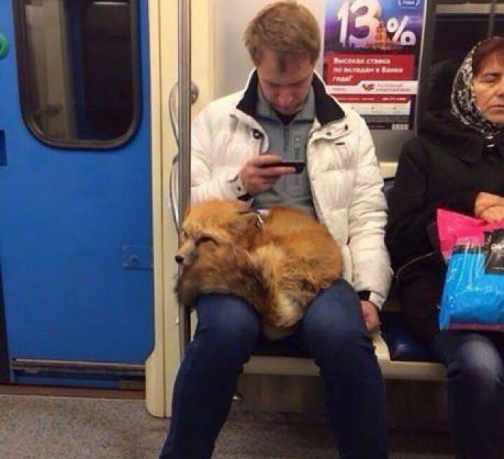 Călătorii din metrou au crezut că nu văd bine. Și totuși: ce ține acest tânăr în poală?