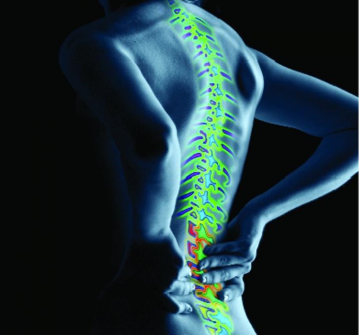 Atenţie! Problemele de coloană pot afecta şi alte organe. Care sunt simptomele