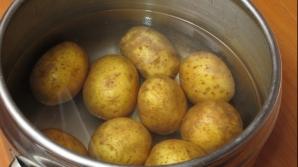 Cartofi fierţi