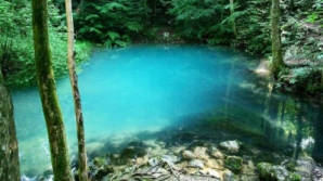 Minunile României: Lacul cu reflexe de smarald din Maramureș, unic în Europa