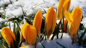 Vremea extremelor: soare cu dinţi, lapoviţă şi ninsori. Prognoza meteo pe trei zile