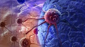 Descoperire uimitoare: Acest aliment banal distruge celulele canceroase