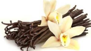Efectele miraculoase ale vaniliei, condimentul care calmează orice durere