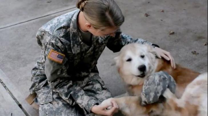 Emoționant. Reacția unui câine când stăpânul său, un soldat, s-a întors din misiune