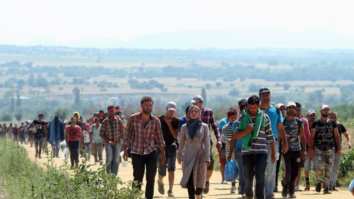 Criza imigranţilor. O ţară ia în considerare să trimită armata la frontiere