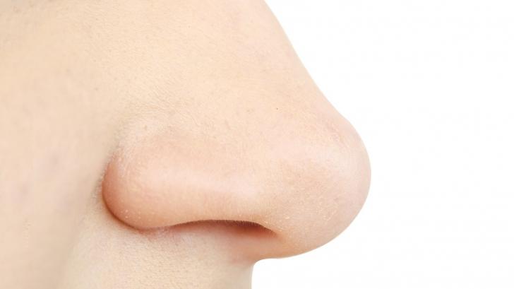 Află totul despre o persoană, în funcţie de forma nasului