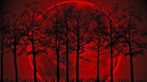 Ce înseamnă dacă visezi sânge