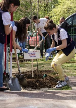 """Robert Negoiţă și elevii şcolii gimnaziale """"Nicolae Labiş"""" au plantat 20 de copaci într-un miniparc"""