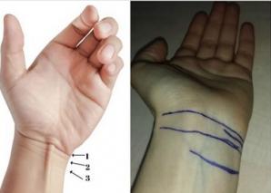 Numărul lor îți arată când vei muri. Tu câte linii ai la încheietura mâinii?