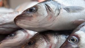Peștele pe care îl cumpărăm din magazine nu este așa de sănătos precum credeam. Ce poate conține