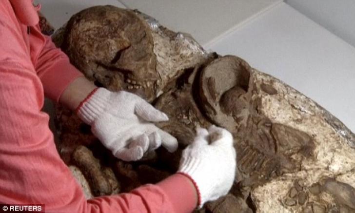 Au examinat cea mai veche fosilă umană din lume, veche de 4800 de ani. Detaliul care i-a șocat