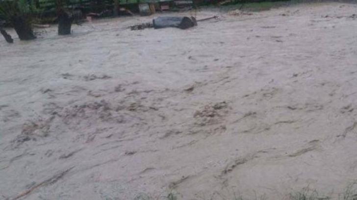 Inundații devastatoare în Germania. Trei morți și mai mulți răniți