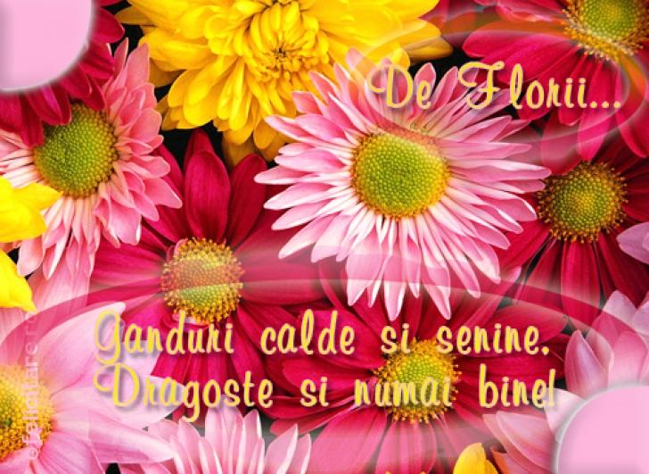 MESAJE DE FLORII, SMS-URI DE FLORII, URĂRI DE FLORII. Cele mai frumoase mesaje şi urări de FLORII