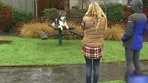 Iubitul violent aproape o desfigurase. Când a crescut, câinele i-a făcut ASTA. Cutremurător!