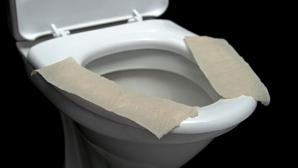 Pui hârtie igienică pe capacul toaletelor publice? Nu o să mai faci asta niciodată!