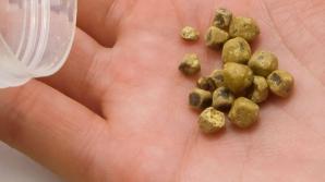 Dietă care te ajută să elimini pietrele la fiere. Efectele sunt uimitoare