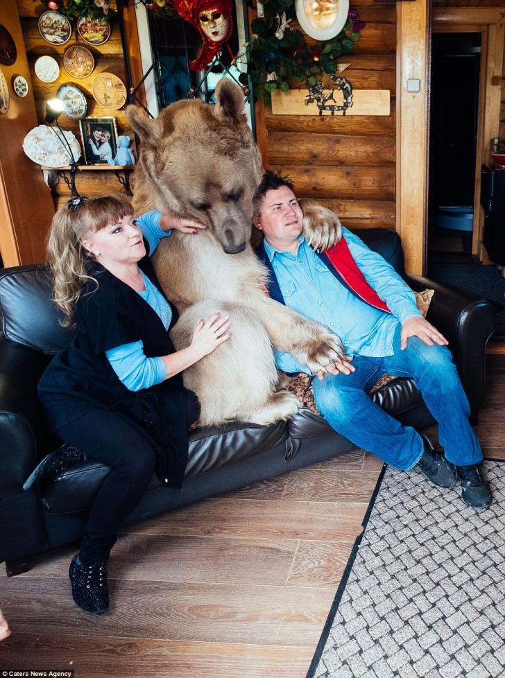 Un cuplu împarte casa, de 23 de ani, cu un urs uriaș. Imagini fabuloase!