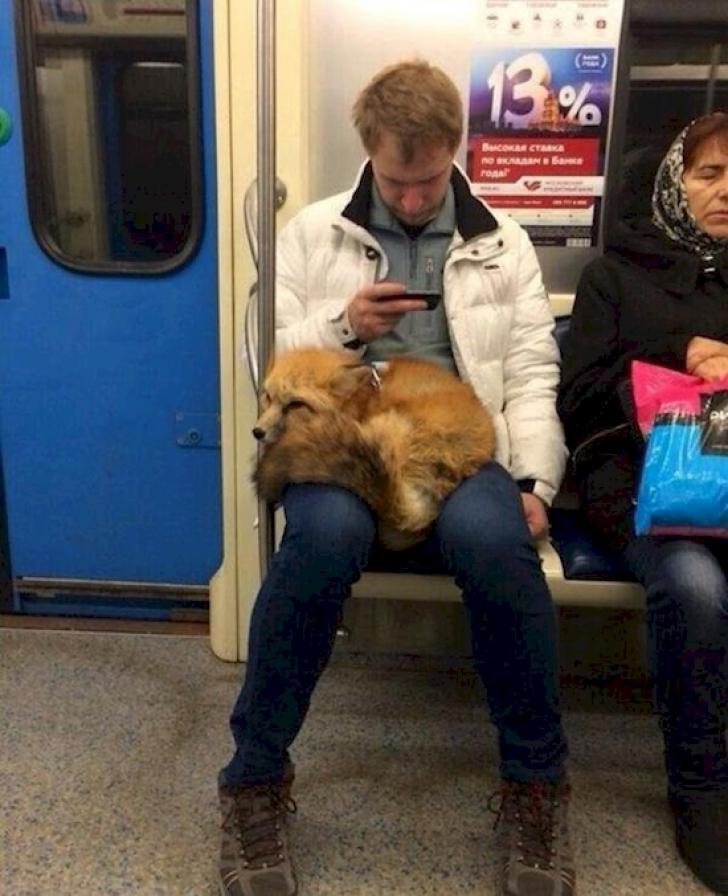 Cum a fost surprins acest bărbat la metrou. Călătorilor nu le-a venit să creadă. Ce căra în braţe