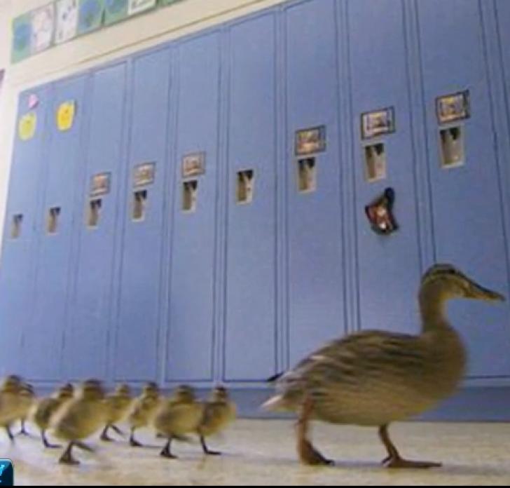 Această școală se închide o zi pe an, în fiecare an. Motivul te va emoționa
