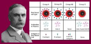 Google îl omagiază pe medicul Karl Landsteiner, medicul care a descoperit grupele de sânge