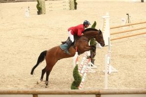 Competiția hipică internațională Salina Equines Horse Trophy a început. Proba de Obstacole
