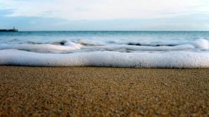 Mergea pe plajă și a călcat pe ceva moale. Apoi nisipul a început să se miște. A dat să fugă, dar...