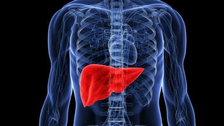 Cel mai eficient tratament naturist care ajuta la regenerarea ficatului. Efectele se vad imediat