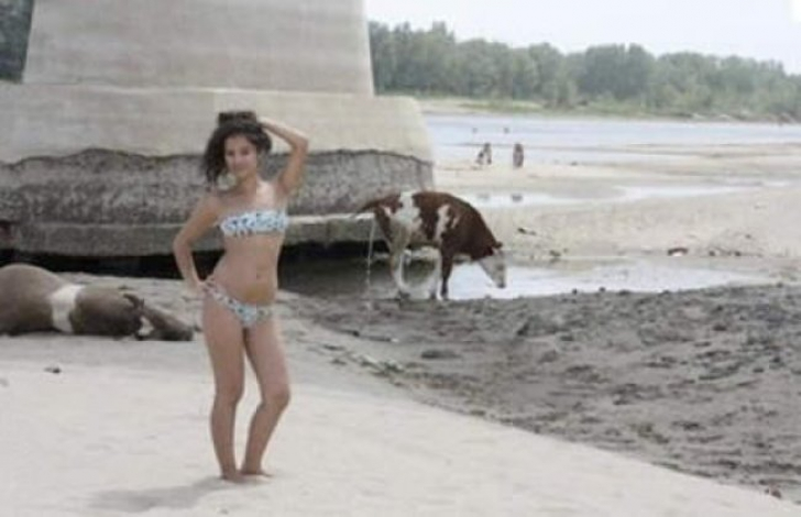 Cele mai dezastruoase fotografii de pe plajă. Protagoniștii lor și-ar fi dorit să nu ajungă pe net