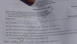 Subiecte BAC mate-info M1